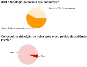 bolsas2013